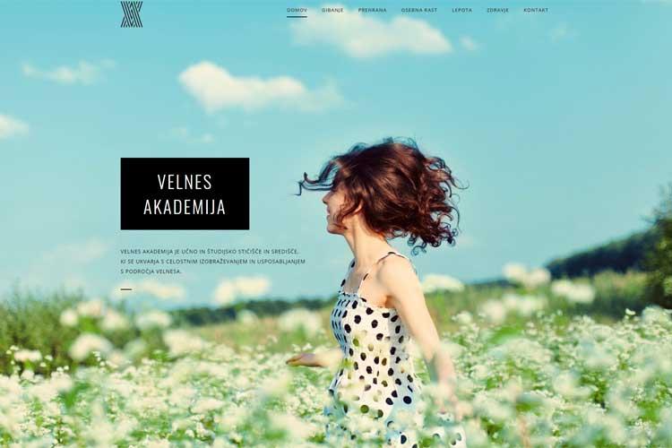 www.velnesakademija.si